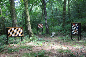 Commode louis XV avec motifs géométriques dans la forêt. French commode