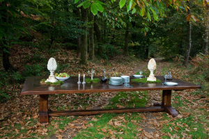 table in the woods- table dans les bois- table dans la foret